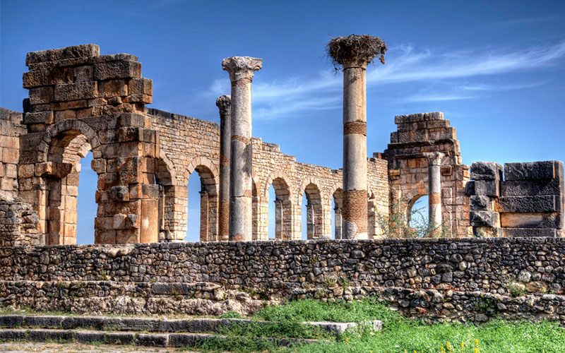 Remains of Roman civilization in Volubilis